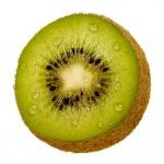 kiwi (91)