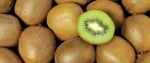kiwi (98)