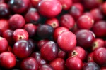 cranberry (91)