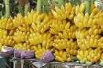 banana (90)