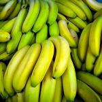 banana (93)