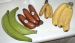 banana (95)