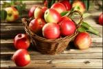 maçã (93)