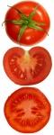 tomate (09)