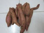 batata-doce (07)