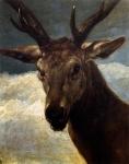 A Cabeça de um Cervo