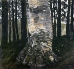 Bétula em uma Floresta