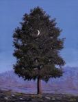 Árvore com Lua Crescente