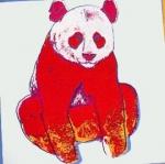 Especies Ameaçadas - Panda Gigante