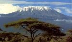 Kilimanjaro  (05)