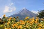 Mayon (05)