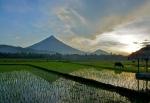 Mayon (12)