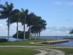 palmeira-real-cubana (10)