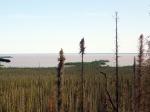 Grande Lago do Escravo (03)