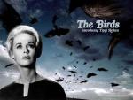 1963-Pássaros, Os (3).jpg